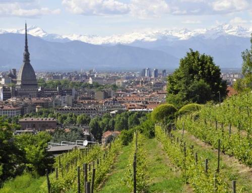 Curare la salute psicofisica: da Torino una risposta