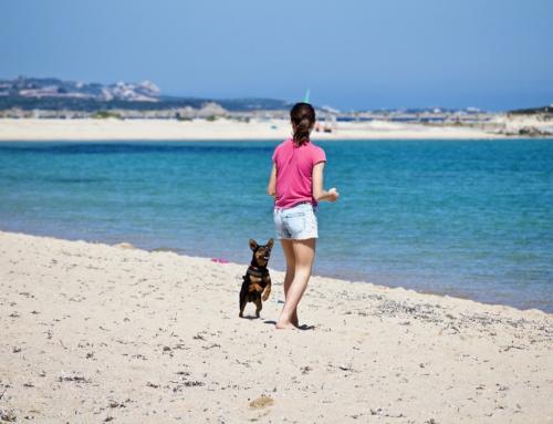 Come l'attività fisica all'aperto fa bene alla salute